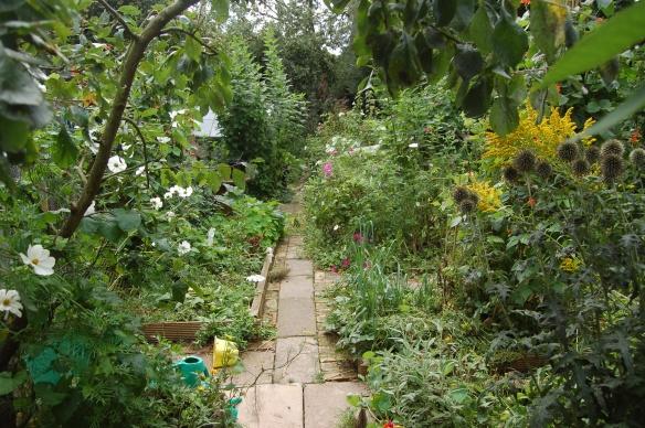 garden sept2