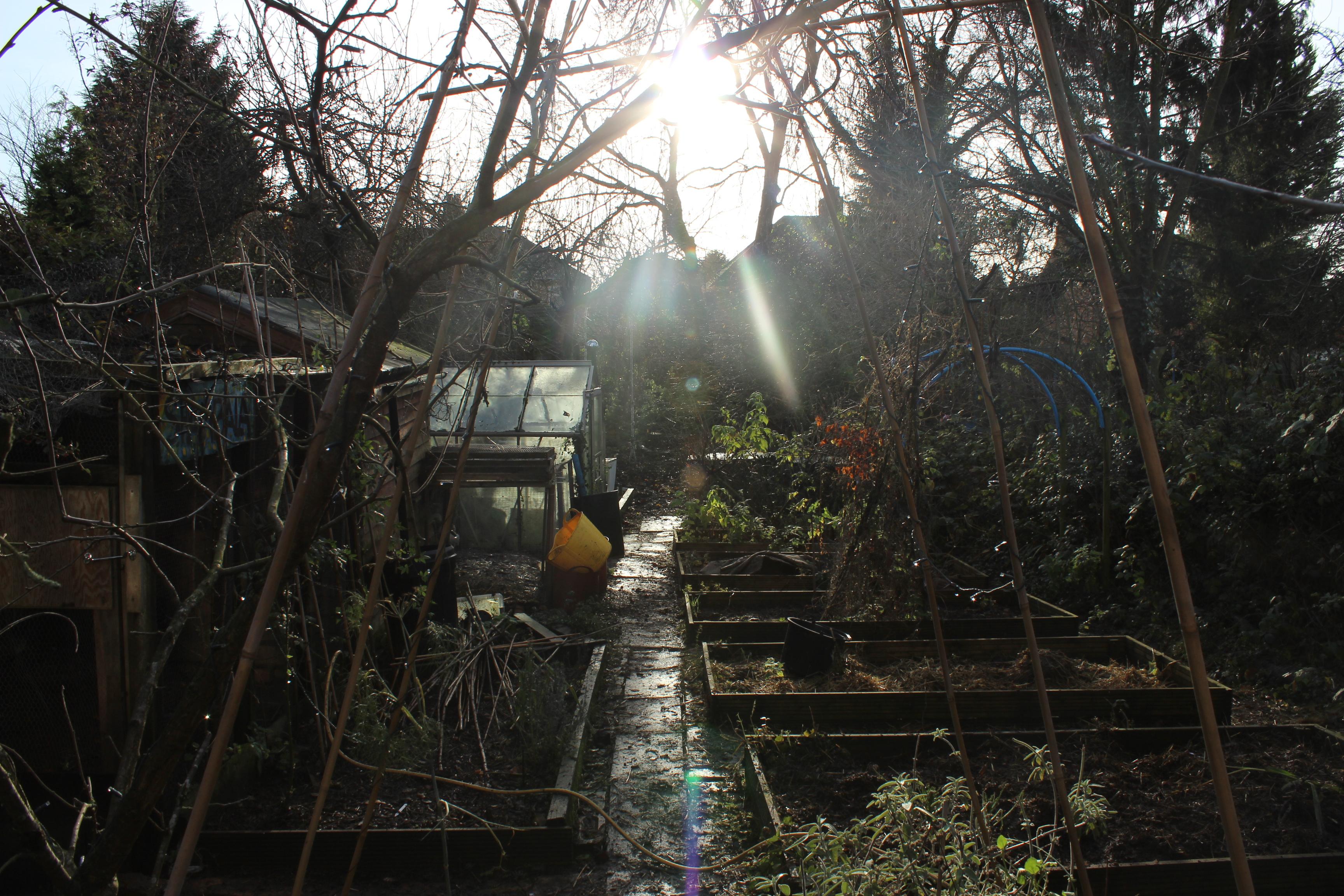 december 2014 nurturegreen