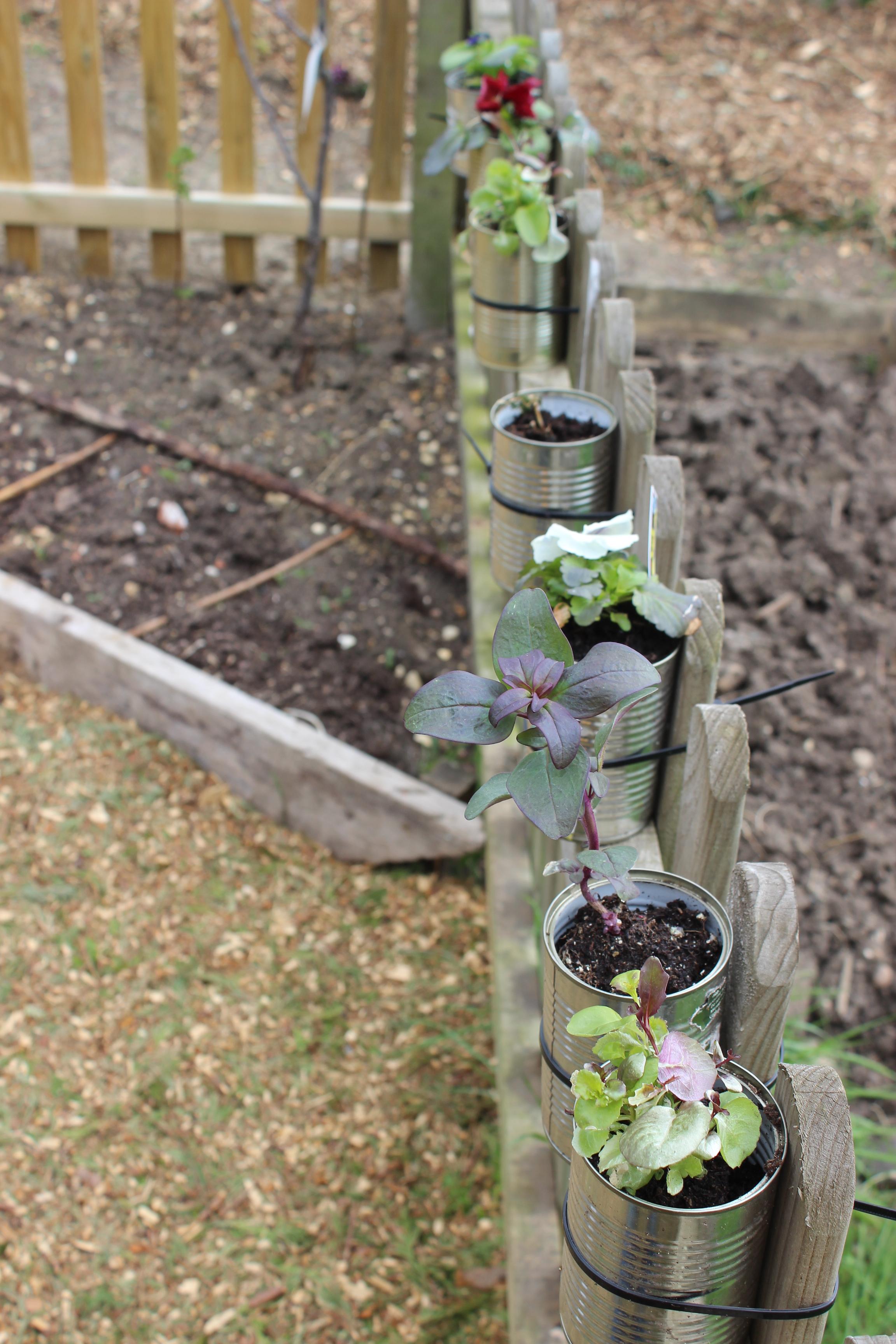 Muddy Boots Garden Re-design